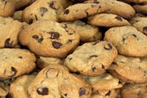 Chocolate chip cookies — Stockfoto