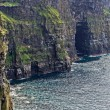 Stock Photo: the cliffs of moher