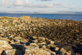 Galway Bay — Stock Photo