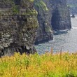 Stock Photo: cliffs of moher