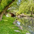 Stock Photo: A Bridge in the Park