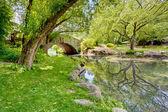 A Bridge in the Park — Stock Photo