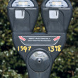 Parking Meter — Stock Photo
