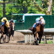 Horse Race Panorama — Stock Photo #2262039