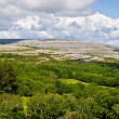Ireland Landscape of Burren — Stock Photo #2372402