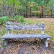 Royalty-Free Stock Photo: A Bench in the Woods