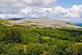 Burren İrlanda peyzaj — Stok fotoğraf