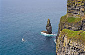 Cliffs of Moher and Boat — Stock Photo