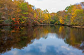 Lake and Trees in Autumn — Stock Photo