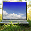 Laptop On Green Grass — Stock Photo