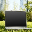 Laptop on Grass — Foto Stock