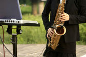 Flute concert at the park — Stock Photo