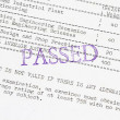 Passed the board examination — Stockfoto