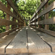 Bridge wooden — Stock Photo