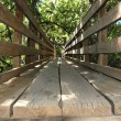 Bridge wooden — Stock Photo #1950833
