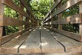 Bridge wooden — Stock Photo