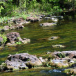 River rock landscape — Stock Photo