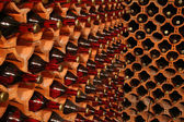 Wine cellar — Stockfoto