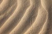 Dunes — Stock Photo