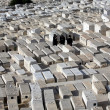 Mount of Olives Jewish Cementery — Stock Photo
