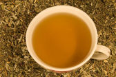 The cup of herbal tea — Stock Photo