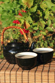 Herbal tea in a garden — Stock Photo