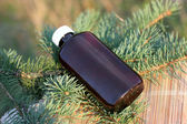 Aromatic oil extract from fir — Stock Photo