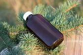 Extraia o óleo aromático de abeto — Foto Stock