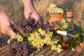 Herb and essential oil — Stock Photo