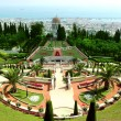 Garden Bahai - Stockfoto