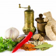 Spices, herbs and  grinder — Stock Photo