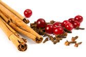 Cinnamon, carnation, cranberry — Stock Photo
