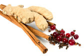Cinnamon, carnation, ginger, cranberry. — Stock Photo