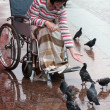 Woman on a wheelchair feeding birds. — Stock Photo