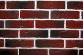 Grunge brick wall — Stock Photo