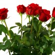 Bouquet red roses — Stock Photo #2309935
