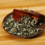 foglie di tè verde — Foto Stock
