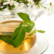 Herbaceous tea — Stock Photo