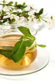 Herbaceous tea — Stock Photo