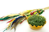 Easter Palm and Fresh Cress — Stock Photo