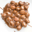 Chocolate covered hazelnuts - Stock Photo
