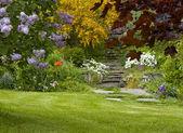 Garden scene — Stock Photo