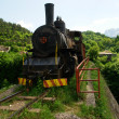 Old steam engine in spring — Stock Photo