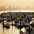 Marina with Kuwait city silhoutte — Stock Photo