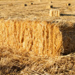 Rectangular hay bales — Stock Photo