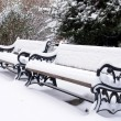 Park benches under fresh snow — Stock Photo