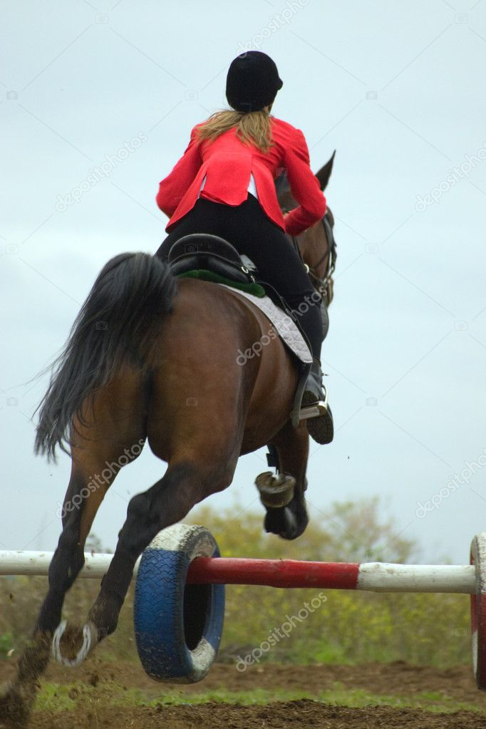 The equestrian and horse. A jump through an obstacle.  — Stock Photo #1985448