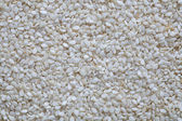 Sesame seeds close up, texture — Stock Photo