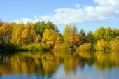 Reflection in lake — Stock Photo