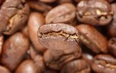 Ein - Kaffee — Stockfoto